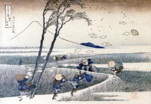 Hokusai Print