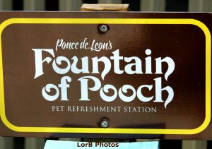 Pooh Sign