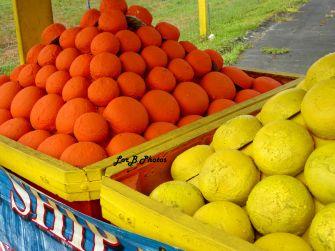 Fake Fruits