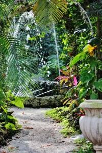 Fountain @Cauley  Sq