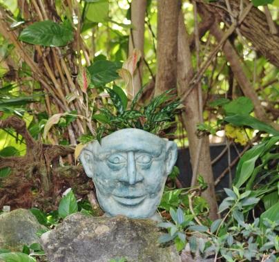 Tropical Plant 047