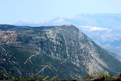 Delphi 012